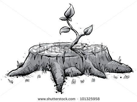 16++ Stump drawing info