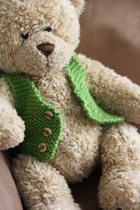 Teddy bear with knitted green vest. Lovely!