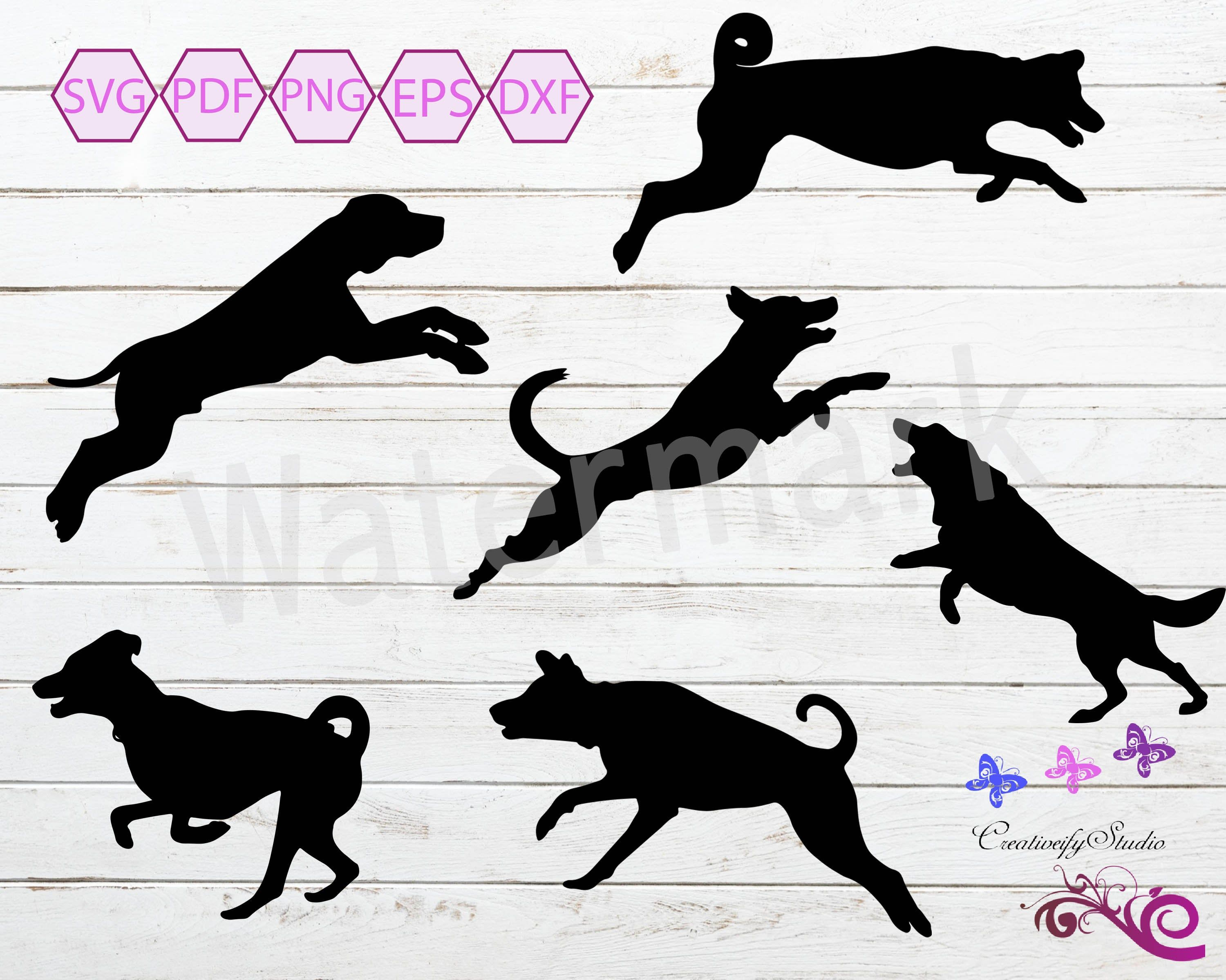 Running And Jumping Dog Dogs Puppy Pet Training Pack Etsy Jumping Dog Dogs And Puppies Pet Training