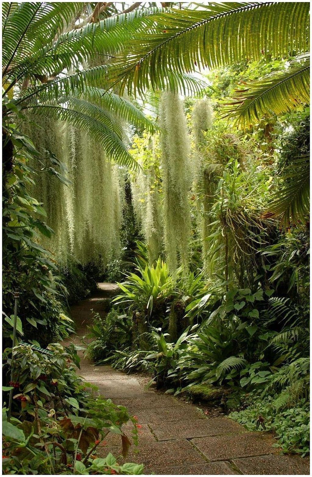 Secret Garden: Warm Tropical Backyard Landscaping Ideas (27)
