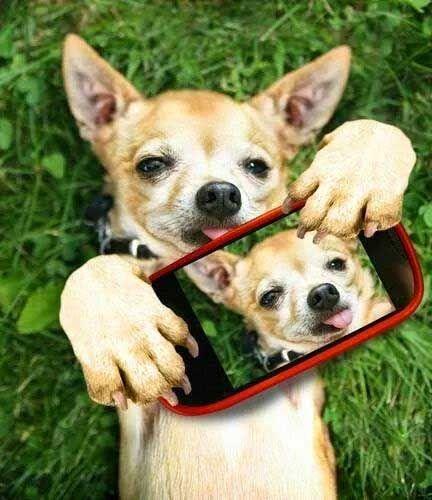 Selfie :p http://pewpaw.com/