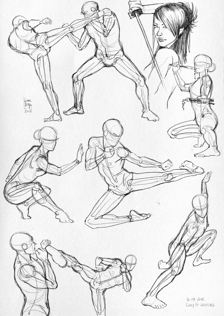 Draw tutorials: fighting poses | anatomia humana, referencias ...