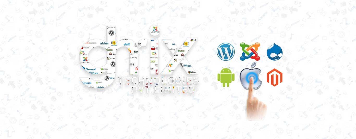 Affordable Software Development Services Online Web Development Design Software Development Online Branding