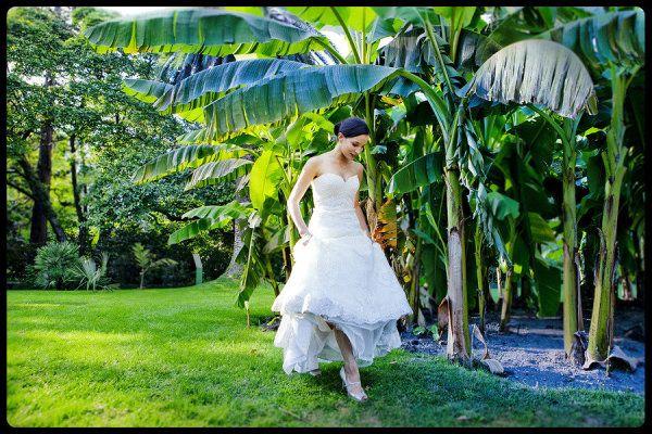 Photography By / jonnydonovan.com, Cinematography By / livingcinema.net