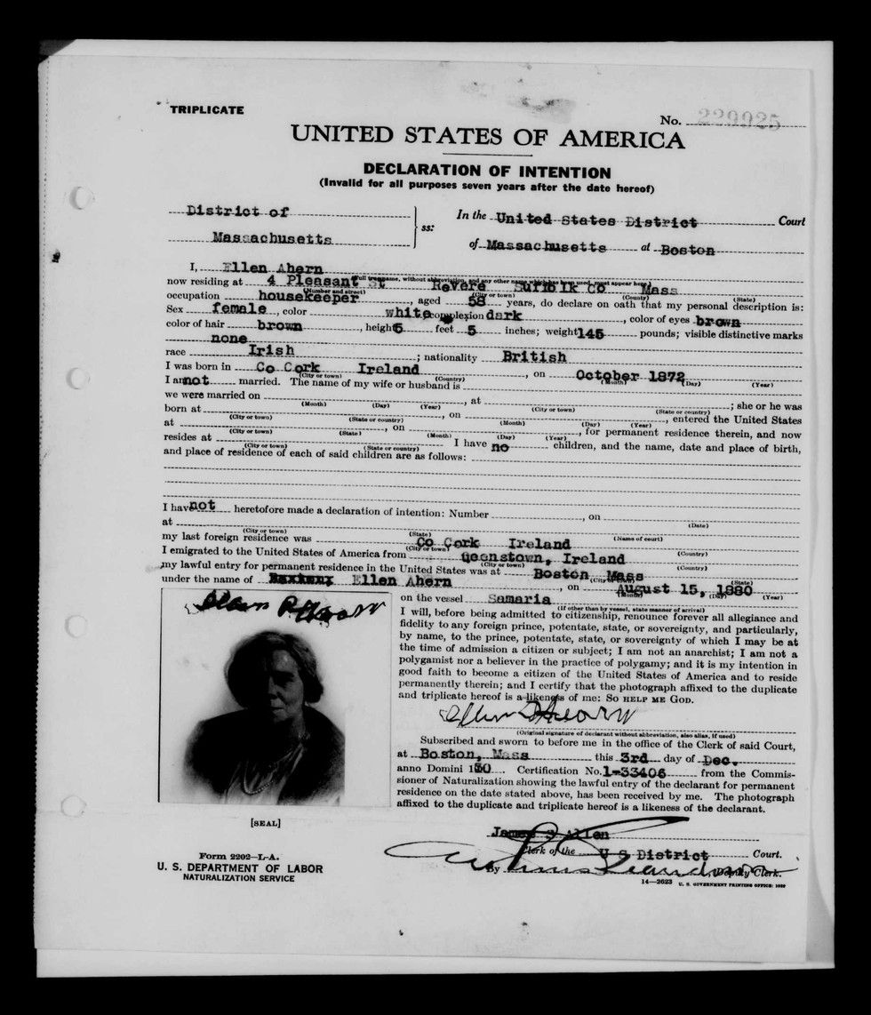 How to find your family 39 s first american using naturalization records links to 1 search guide for Castle garden immigration records