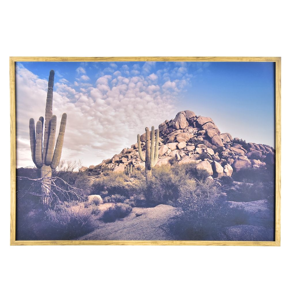 Arizona Desert Framed Print | Pinterest | Deserts, Printing and ...