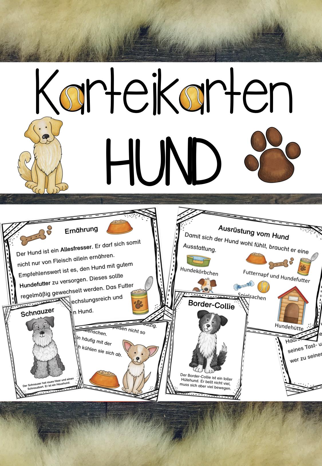 Karteikarten Zum Hund Unterrichtsmaterial Im Fach Sachunterricht Karteikarten Unterrichtsmaterial Tiergestutzte Padagogik