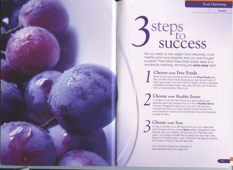 Slimming world food optimising book fitness pinterest food slimming world food optimising book forumfinder Images