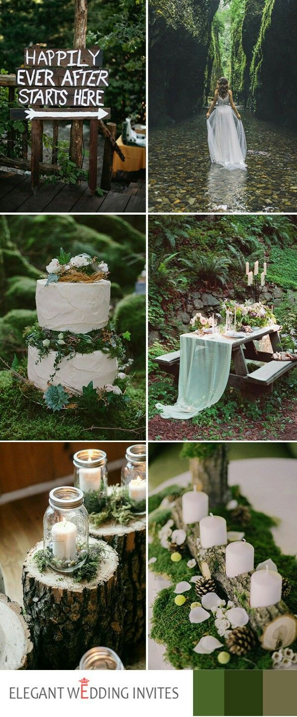 Elegant wedding decoration ideas  Love the moss Bottom right Photo Only as Decor Idea for Sign in