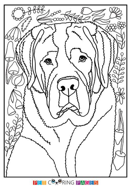 Saint Bernard Coloring Page | diy | Pinterest | Free printable