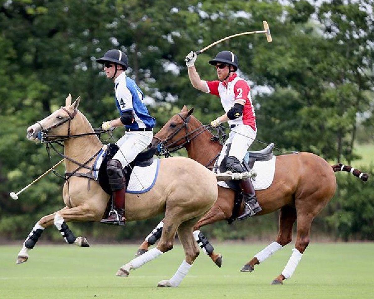 Prins William en Prins Harry   Prince william and ...