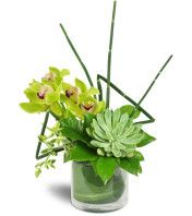 Stately Succulent Bouquet™