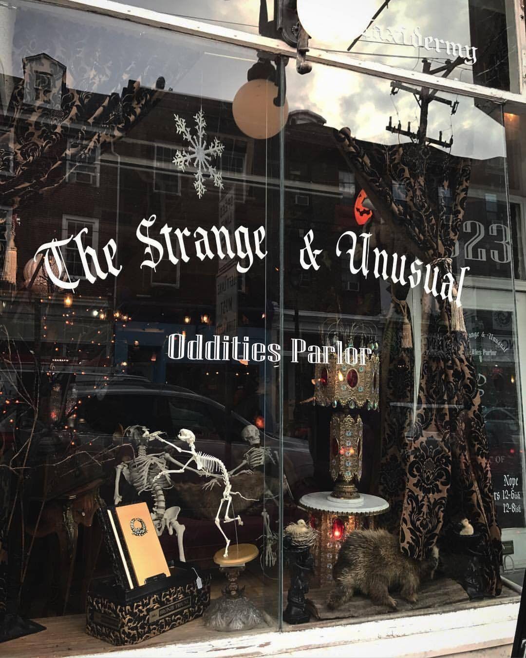 The Strange & Unusual Oddities Parlor | Kingston, Pennsylvania #halloweenaesthetic