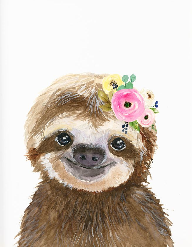 Baby Sloth Print Nursery Animals Nursey Prints Nursery Decor