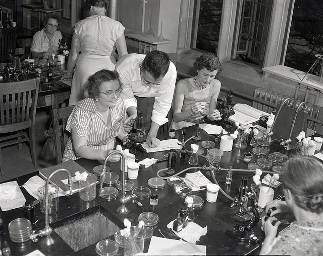 Summer School Teachers' Science Lab, 1951 by Duke Yearlook,