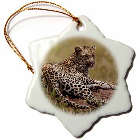 3dRose Africa, Tanzania, Serengeti. Leopard, Panthera pardus., Snowflake Ornament, Porcelain, 3-inch