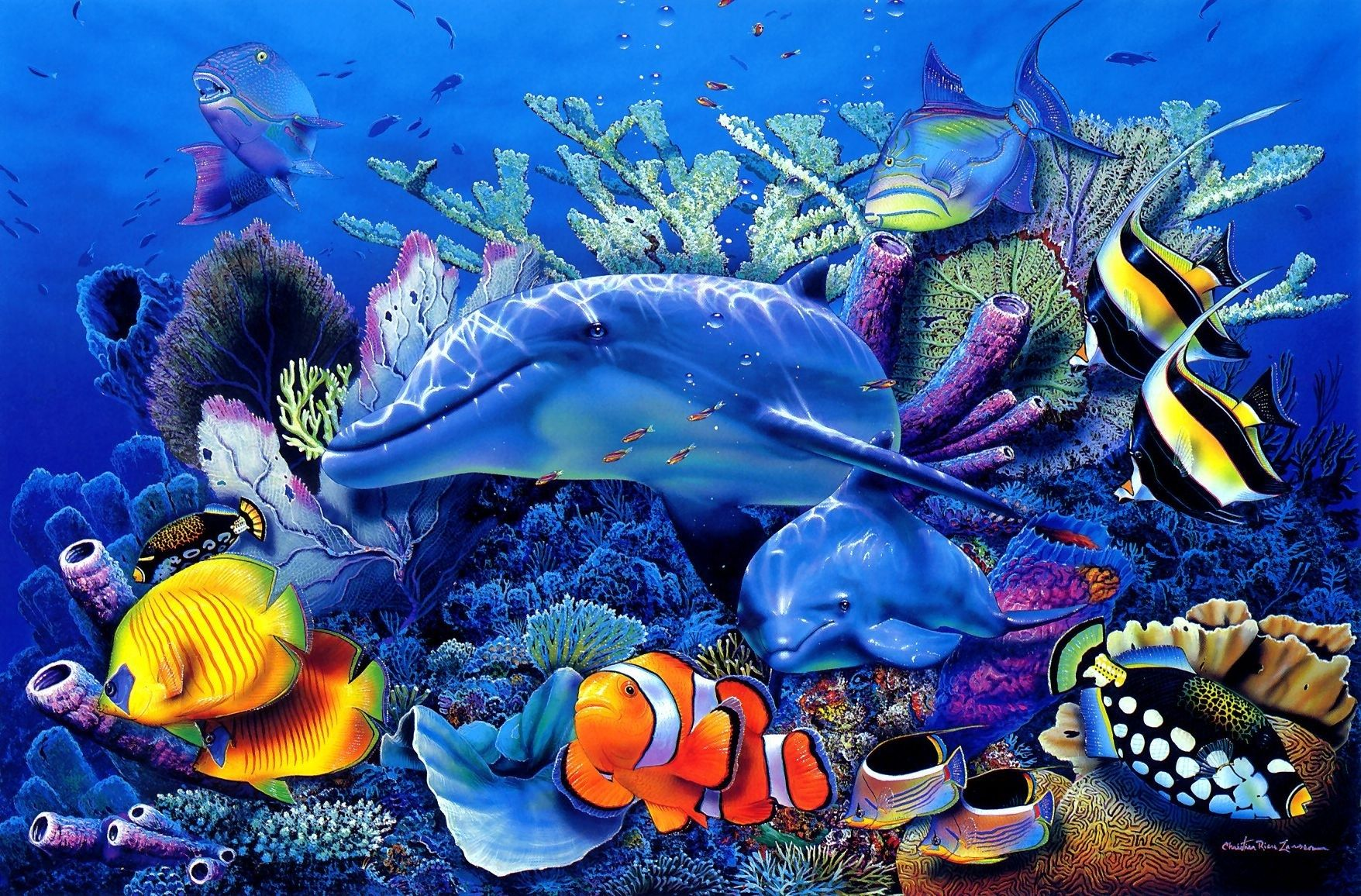 christian riese lassen art | dolphins underwater | dolphin art