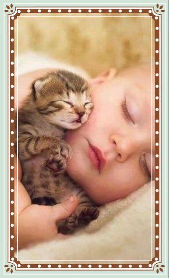 Tiny kitten sleeping with child.