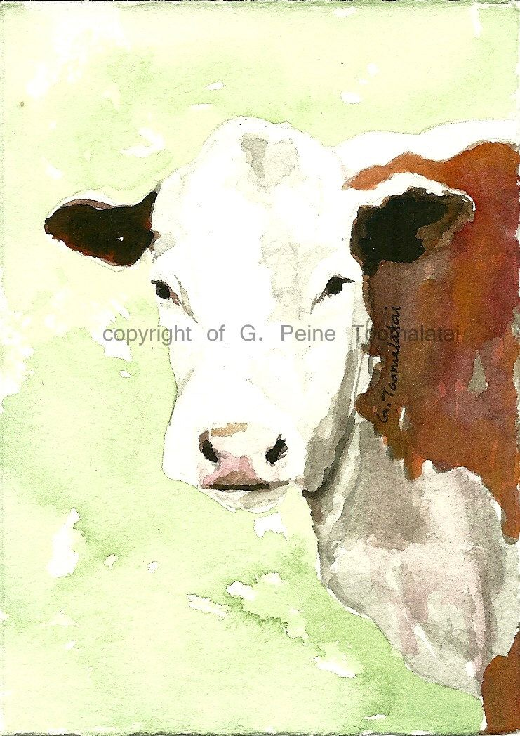 White faced brown cow original watercolor painting Cow painting Cow ...