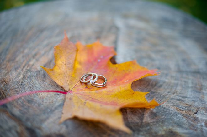 Wedding rings on a leaf.