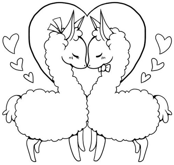Line Art To Colour Alpaca Drawing Coloring Pages