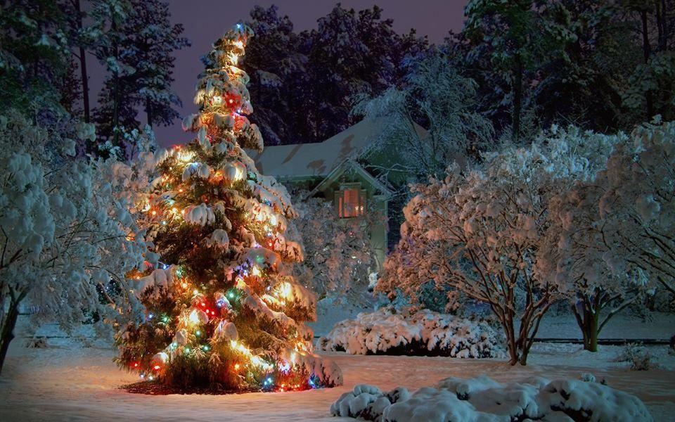 Pin by Emine Sahin on Christmas Pinterest