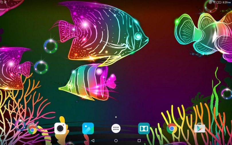 Neon fish live wallpaper free animated screensaver with