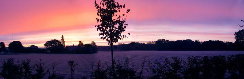 sunrise at lage horst