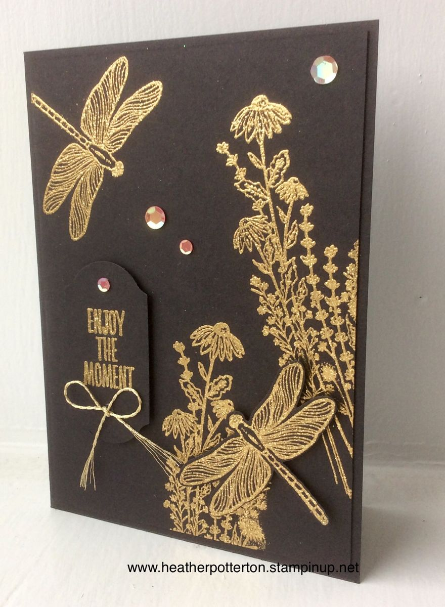 Stampin up Dragonfly Garden