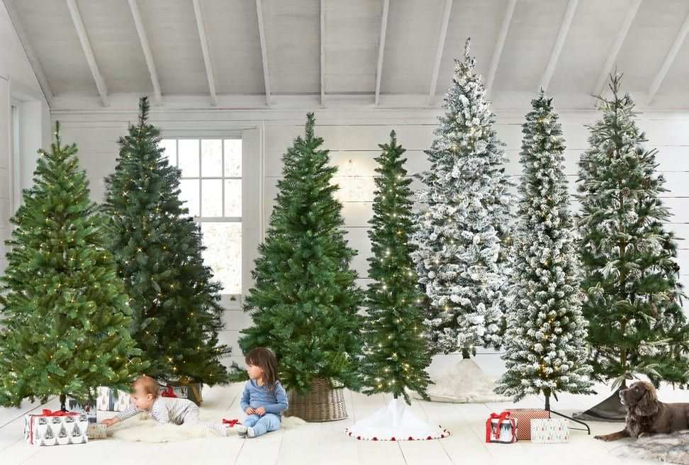 Christmas Trees | Christmas | Home | Next Official Site ...