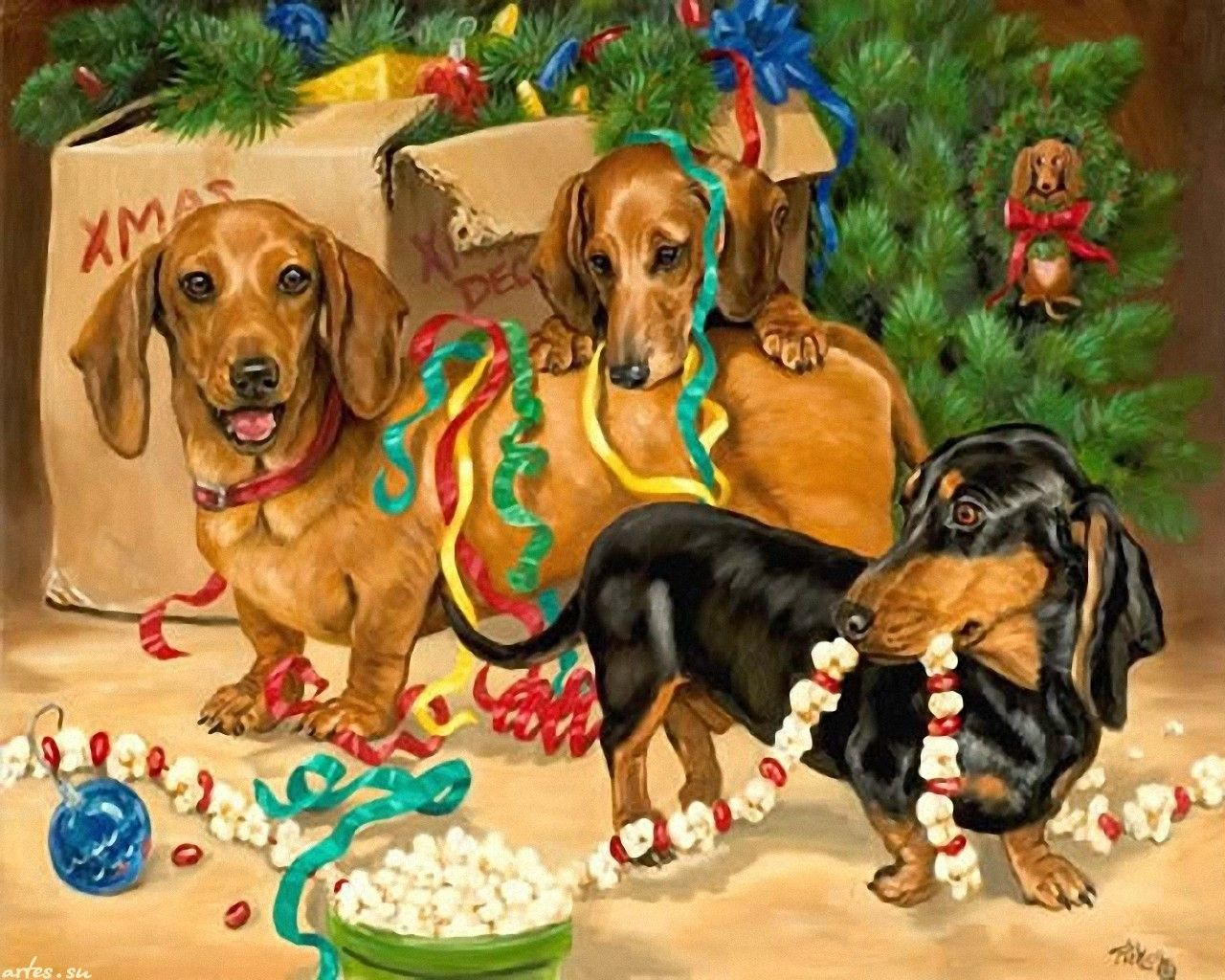 1280x1024 Dogs At Christmas Wallpaper Download Christmas Animals Dachshund Christmas Dachshund Love