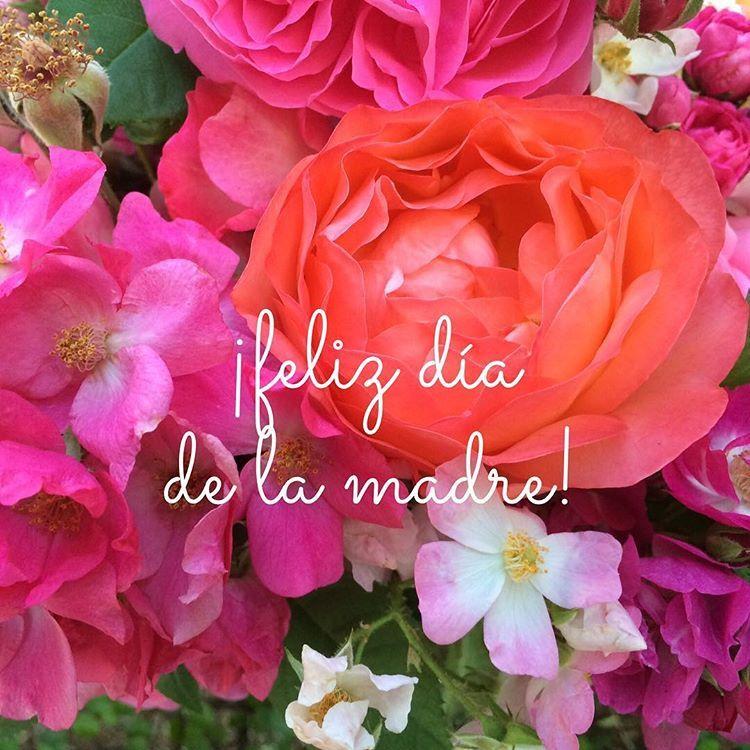 Pima County Public Library On Instagram Feliz Día De La Madre May 10th Is Mother S Day In Mexico So We Wanted To Send Ou In 2020 Dia De La Madre Feliz