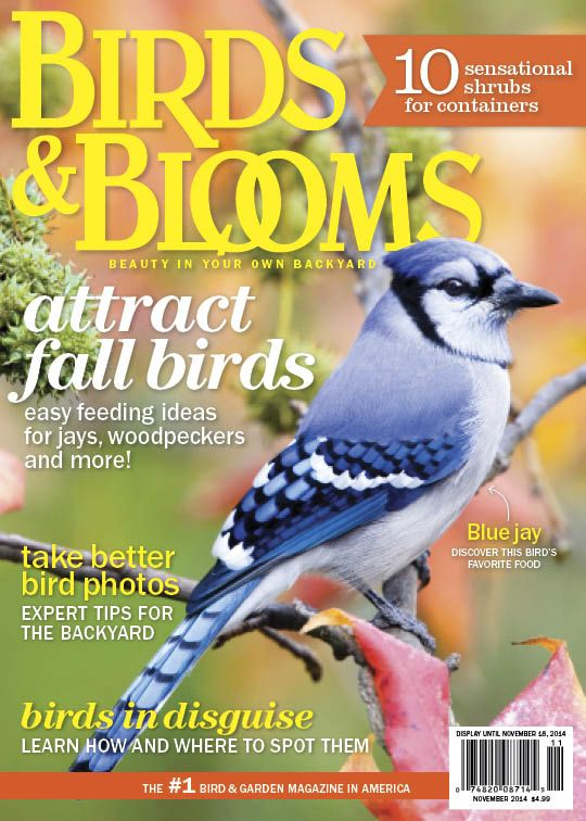 Birds And Blooms   Americau0027s Backyard Birding And Gardening Magazine