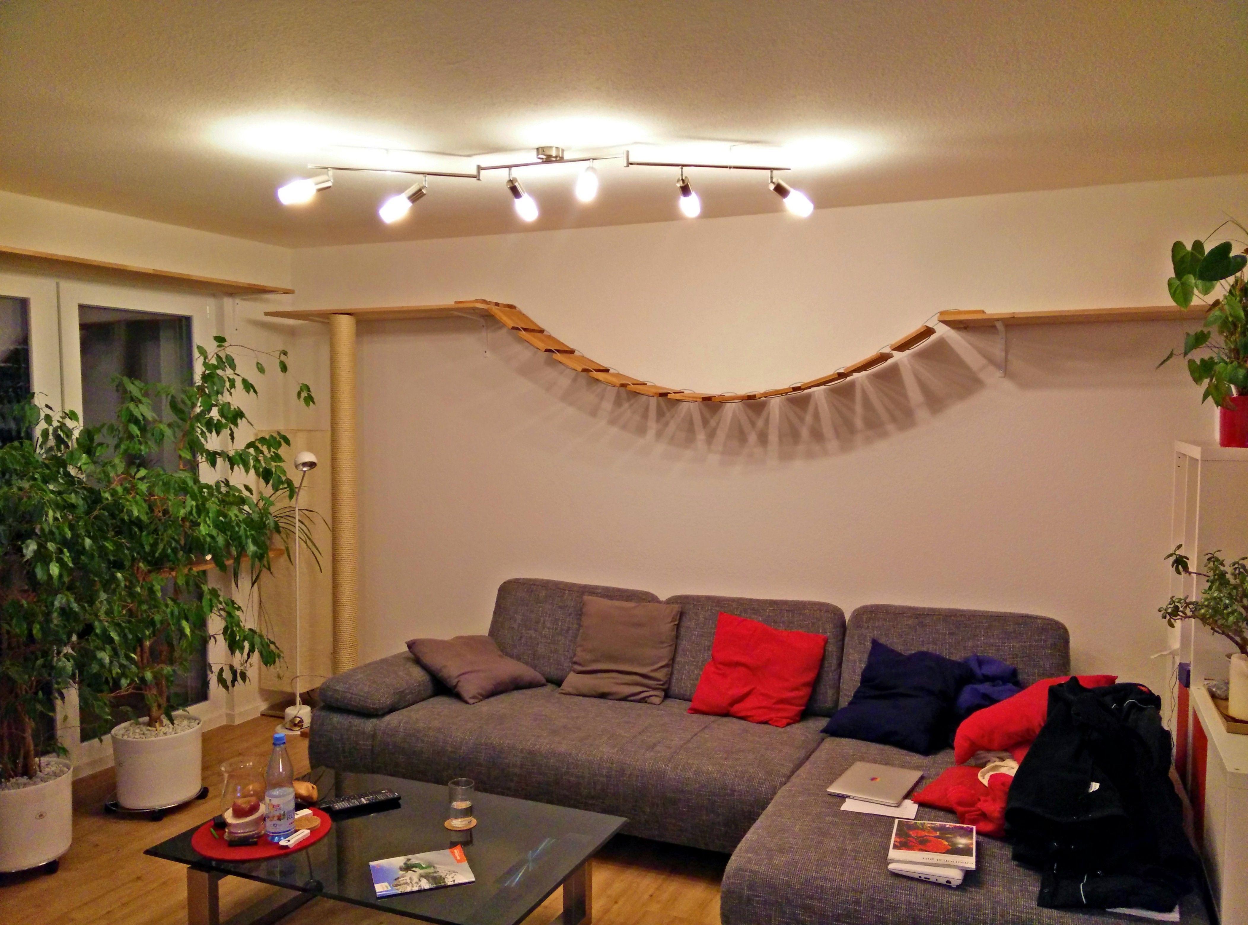 katzen archive unsere eigene wohnung lonni stachi. Black Bedroom Furniture Sets. Home Design Ideas