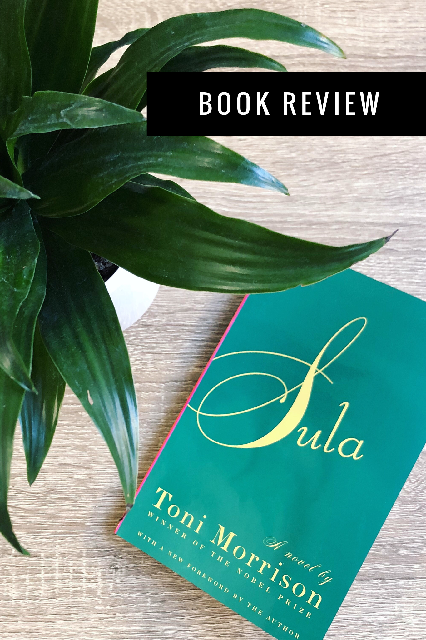 Sula By Toni Morrison Book Review Toni Morrison Book