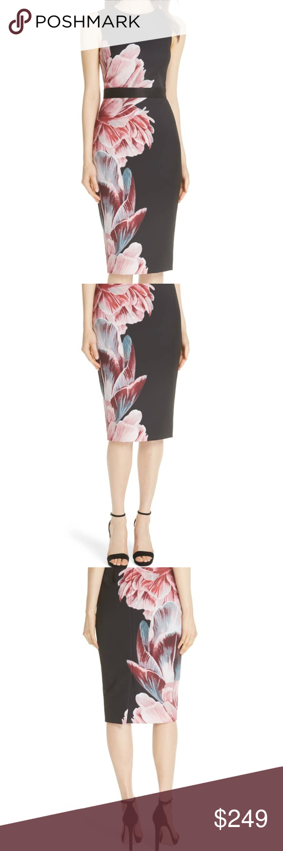 1eed3682b7e9 Ted Baker London Xanadu Tranquility Sheath Dress The garden grows  gorgeously in this body-con