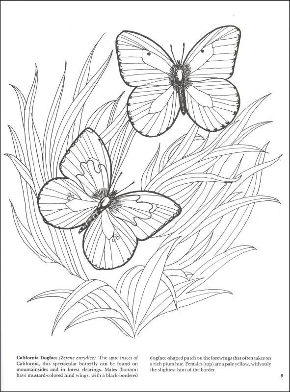 Detailed Coloring Pages For Adults Additional Photo Inside Page