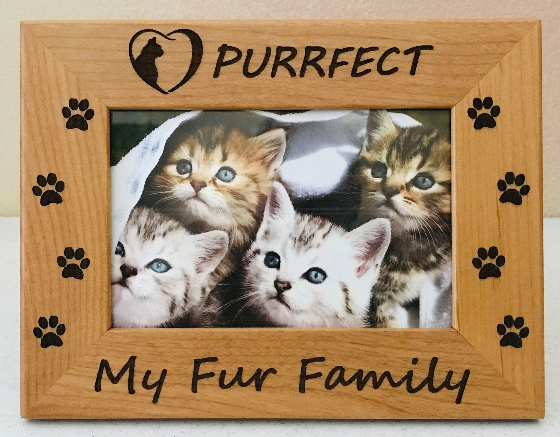 Cat Frame Kitten Picture Frame Gift Cat Photo Photo Frame Cat Lover Gift Cat Photo Frame Cat Gift Kitten Gift Gift For Cat Cat Lover Gifts Kittens Cat Gifts