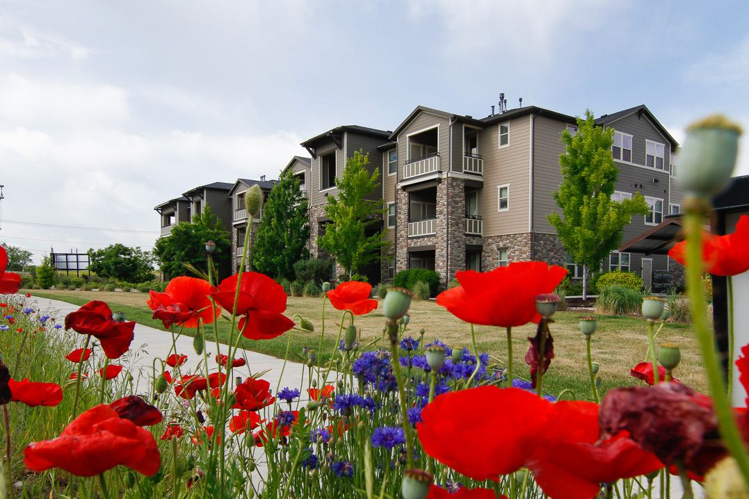 Stop and smell the flowers at San Moritz Apartments in
