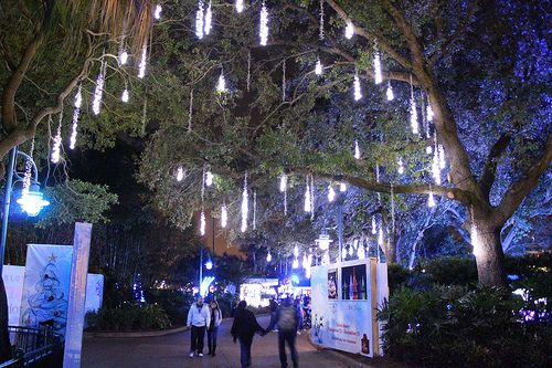 dripping tree lights | Throughout the park, dripping icicle lights ...