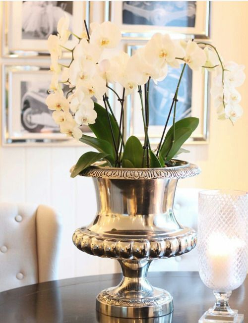 pingl par a rabl sur orchid es pinterest decoration deco et idee deco. Black Bedroom Furniture Sets. Home Design Ideas