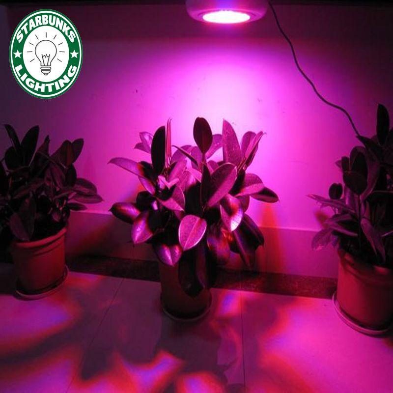 Led Roślin Rosną Lampy Oświetlenie Wewnętrzne Doprowadziły