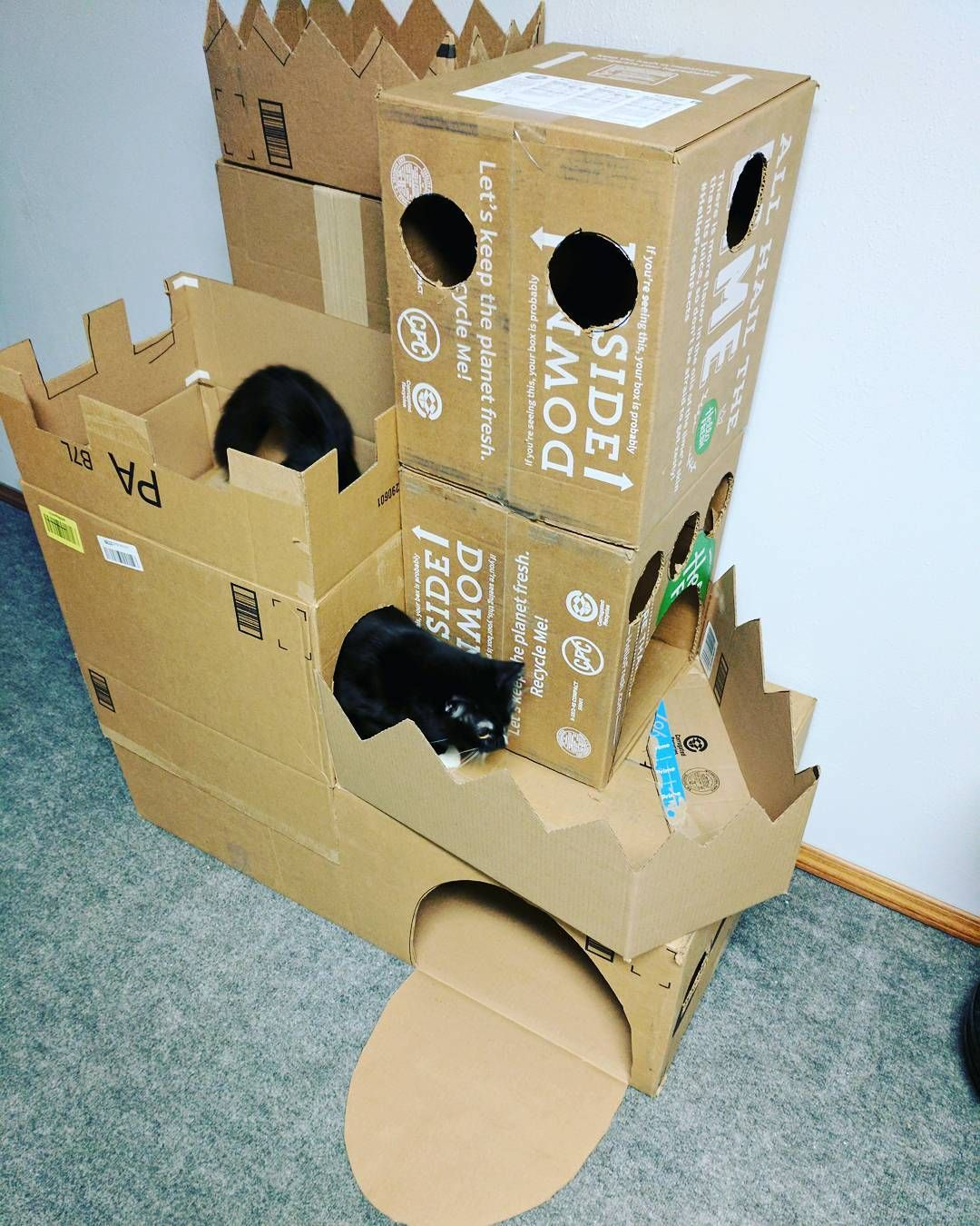 Cat Playhouse. Gloucestershire Resource Centre Http://www