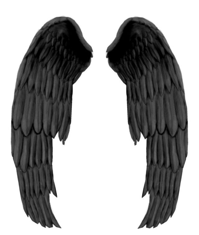 Designer Clothes Shoes Bags For Women Ssense Black Angel Wings Angel Wings Png Demon Wings