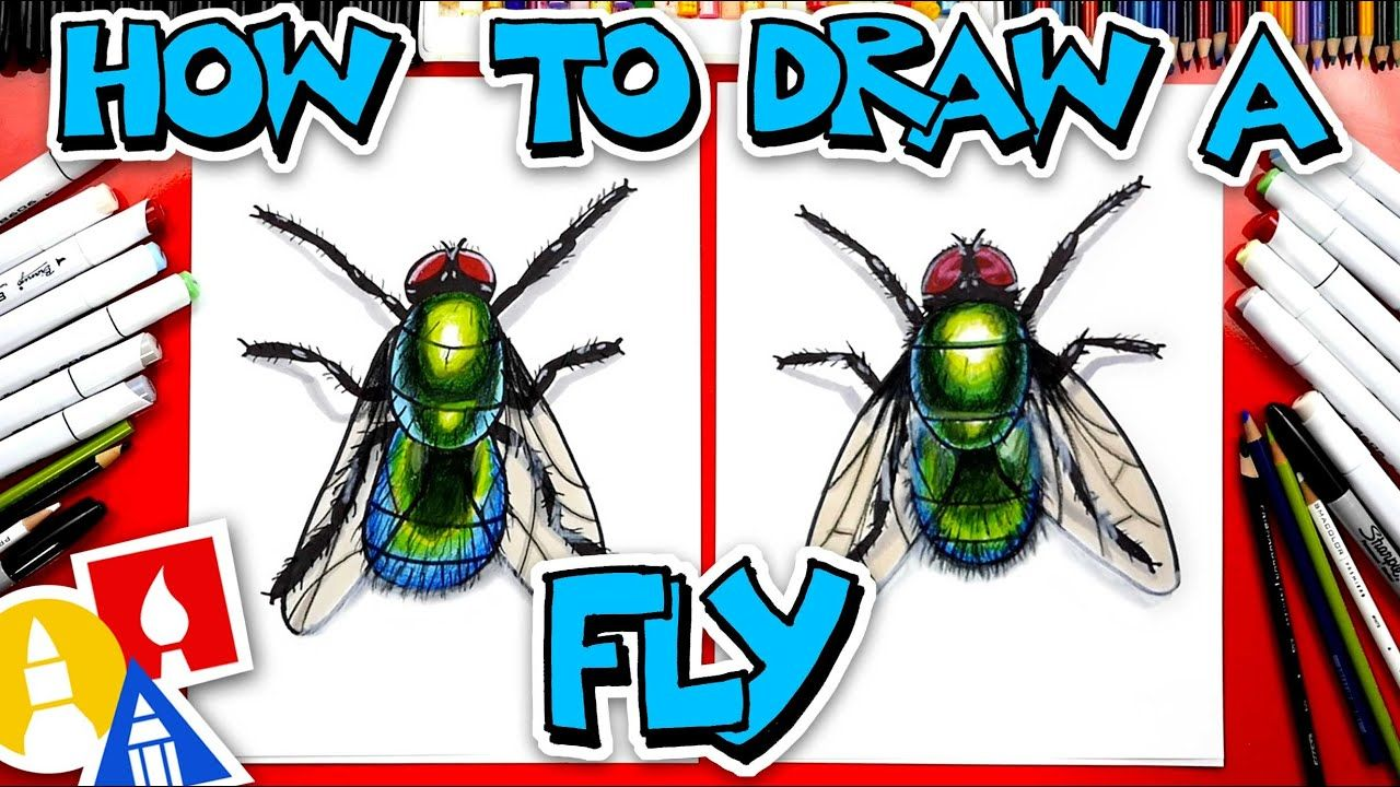 How to draw a realistic fly youtube in 2020 art for