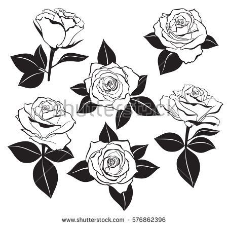 Vector Set Of Detailed Isolated Outline Rose Buds Sketches With Leaves Silhouettes In Black Color Vector Ill Rose Outline Tattoo Stencil Outline Rose Tattoos