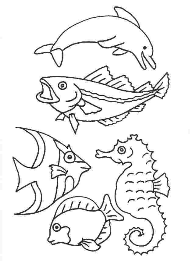 Window Color Vorlagen Tiere Gratis schabloner Mallar Fisk