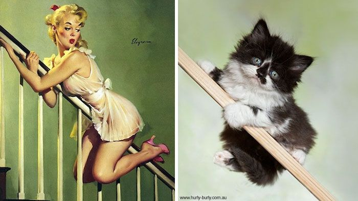 """As popular as the blog comparing cats to beautiful men is, it was clear that there was a market for comparisons between cats and pretty ladies as well. I can only assume that this is the reasoning behind the creation of the """"Cats That Look Like Pinup Girls"""" Tumblr. Now ladies and gentlem"""