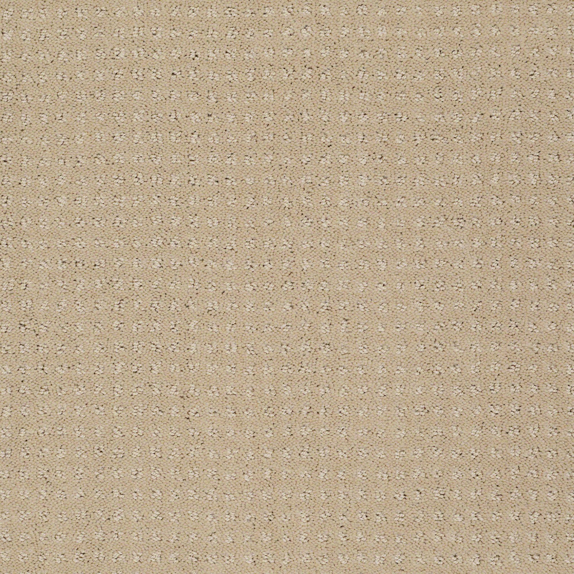 My Choice Pattern Taffeta Carpet samples, Textured