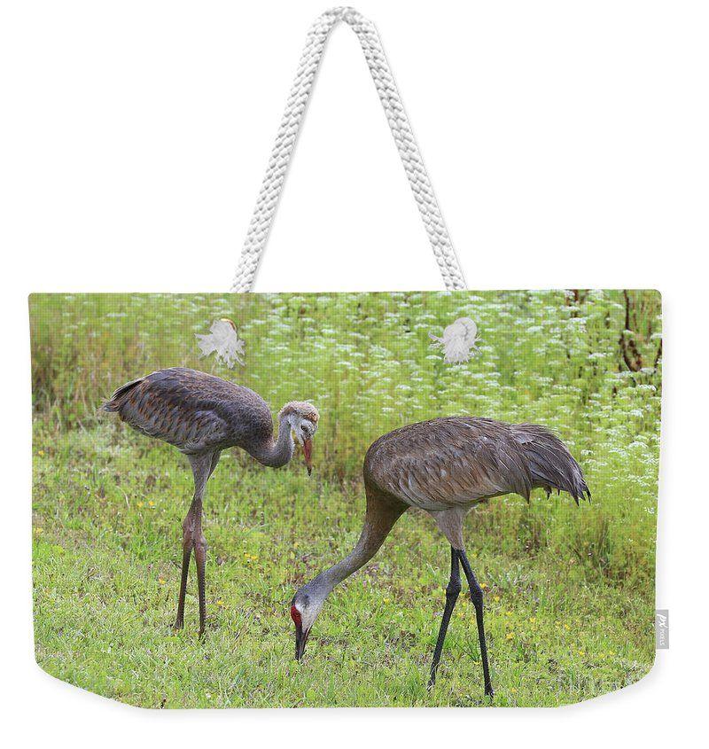 #weekendertotebag #sandhillcranegifts #sandhillcranes #birds #birdbags #birdtotebags